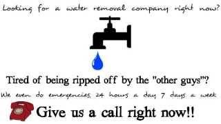 24hr Water, Mold Damage & Restoration Services Chicago, Aurora, Naperville, Joliet Il.