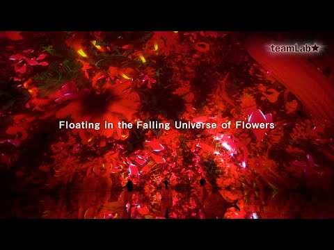 Floating in the Falling Universe of Flowers