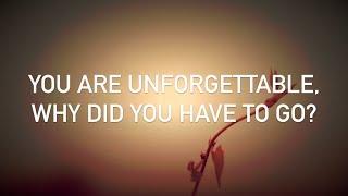 Conor Maynard, Anth - Unforgettable (with lyrics)