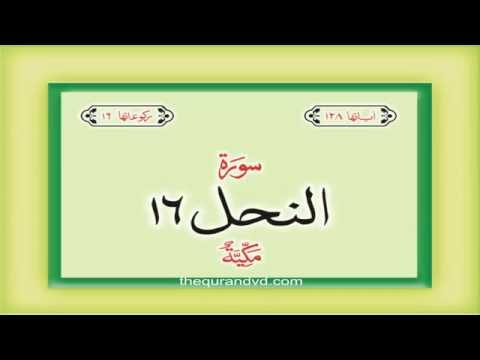 16.-surah-an-nahl-with-audio-urdu-hindi-translation-qari-syed-sadaqat-ali