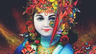 gopal muraliya wale Nandlal Muraliya  Wale vinod agrwal || gopal muraliya wale vinod agrwal bhajan