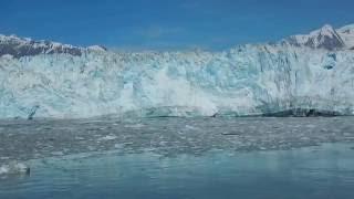 hubbard glacier calving