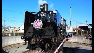 【C56 44】大井川鐵道SL急行かわね路2号の旅【さくらHM】20190324