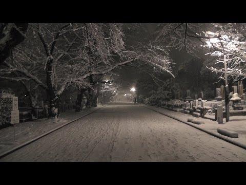 東京・台東区&荒川区 雪と梅の寺町「谷中」   Yanaka of plum blossoms and snow, Tokyo