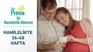 Prima Ile Hamilelik Dönemi 36. - 40. Hafta | Son Değil, Yeni Bir Başlangıç!