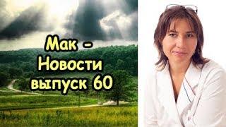 МакНовости 60. Мужские секреты и личная жизнь Макаровой.