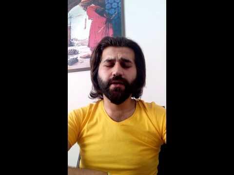 Bahçada Yeşil Çınar Sinan EKREN Cover