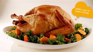 Happy Thanksgiving! How to Cook a Turkey - Easy Roast Turkey for Beginners for the Holidays!
