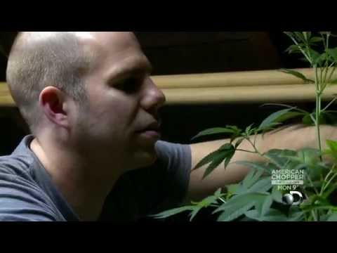 Weed Wars: Worlds Largest Medical Marijuana Dispensary S01E01