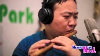 Superhit Nagendra Rai Flute Song Choli Ramro Instrumental HD