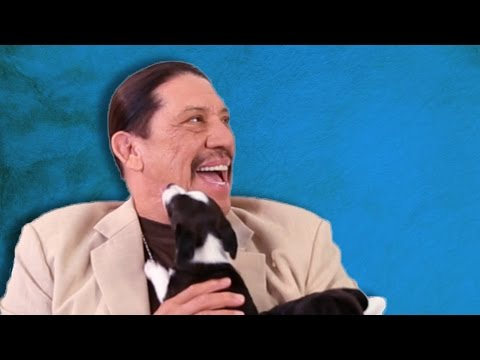 Danny Trejo Gets Surprised With Puppies