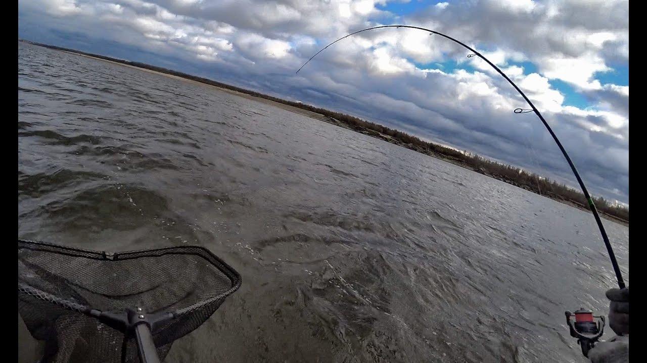 ДВА КРОКОДИЛА ЗА РАЗ В ПОДСАК!!! Трофейная и трудовая рыбалка в штормовую погоду! Рыбалка на Оби.