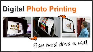 Visit A Professional Photo Printing Lab & Find Out All About It