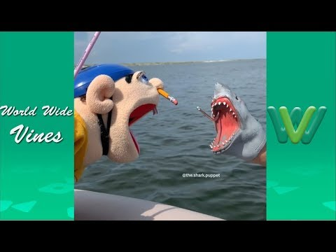 New Shark Puppet Instagram Videos 2019 | Funny Shark Puppet Videos 2019 #1