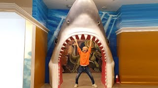 대형 상어 가족 입에 들어갔어요! 키즈카페 박물관은살아있다 트릭아트 놀이 Giant baby Shark Trick playground for kids