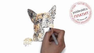 Нарисованные карандашом собаки  Как поэтапно нарисовать немецкую овчарку