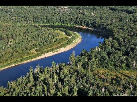 Купить дом в Черниговской области, у реки Десна.