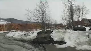 Масштабное разгробление леса в России