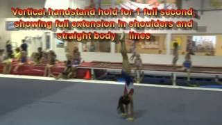 USAG Level 3 Floor Exercise Tutorial: New Routines 2013-2021