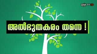 അല്ഭുതകരം തന്നെ -Super Islamic video Malayalam -Zain TV HD