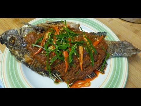 Thai food fried tilapia fish with red curry paste sauce for Fried tilapia fish