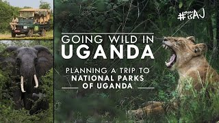 Uganda: Planning a Trip to National Parks | #WhereisAJ?