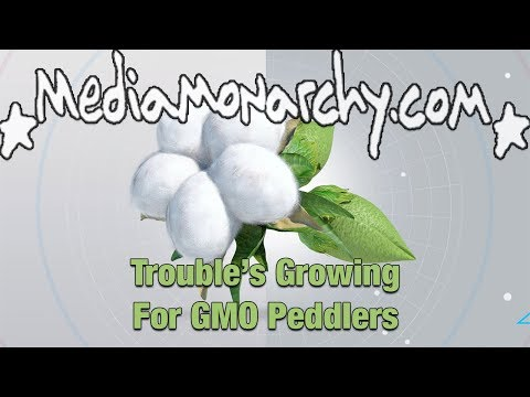 Trouble's Growing for GMO Peddlers - #GoodNewsNextWeek
