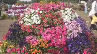 National Song with beautiful flowers Ayy Watan payara watan 22 March 2009 Lahore, Pakistan