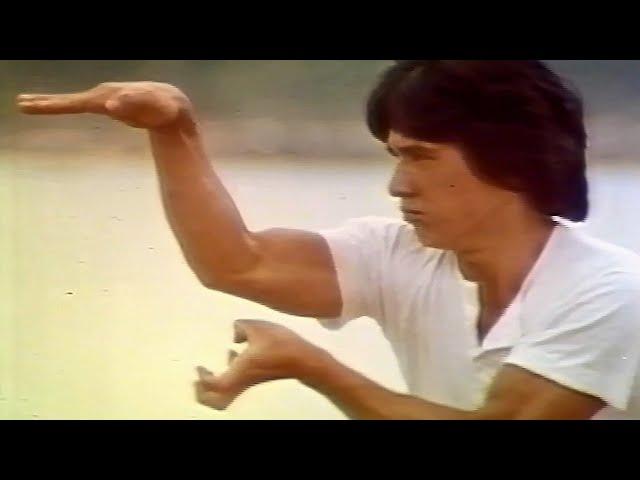 『蛇拳』 TV日本語吹き替え版  ジャッキー・チェン