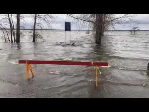 Britannia Park Ottawa, May 7th flooding