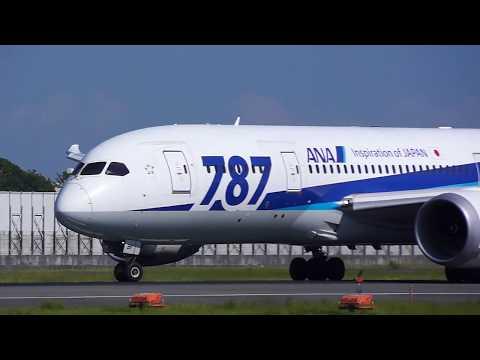ITM ANA Boeing 787-8 Dreamlinerカラスで立ち往生 2017年9月27日編