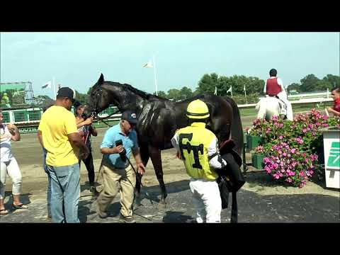 video thumbnail for MONMOUTH PARK 8-18-19 RACE 7