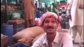 WhatsApp funny videos