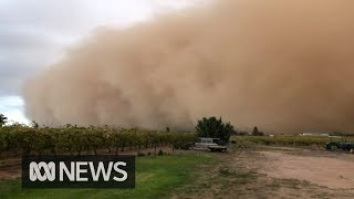 Dust storm turns day into night in town of Mildura | ABC News