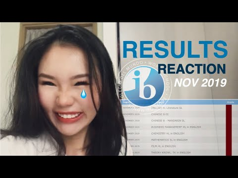 IB Results Reaction (November 2019)