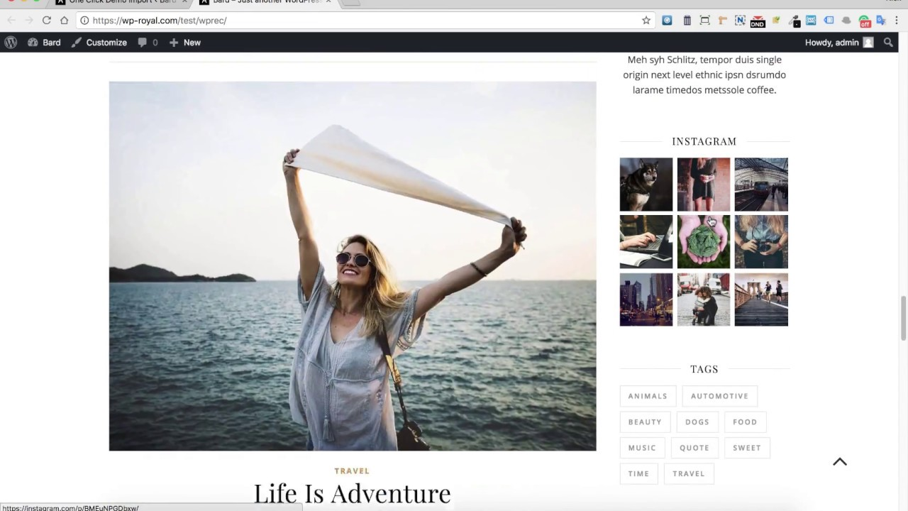 How To Import a Demo Content in the Ashe Free Wordpress Theme