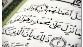 ناصر القطامي سورة محمد