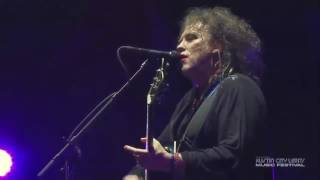 The Cure - From The Edge Of The Deep Green Sea. Live 2013.
