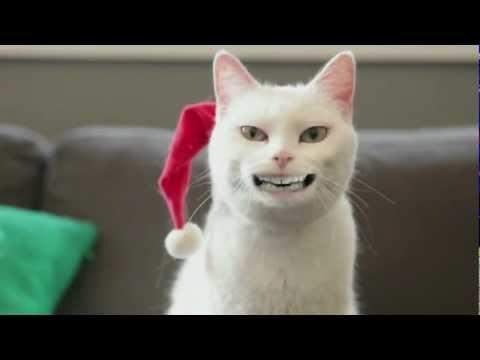 Yodeling Cat (Walmart Christmas 2011 Advertisement) HD
