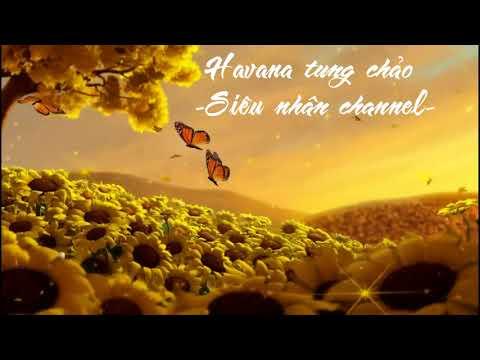 Phá đảo với havana nhé - Music for gym - dance and remix - Siêu nhân channel