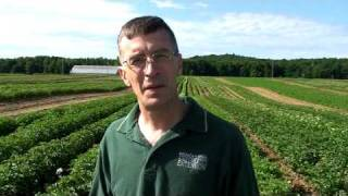 Potato Specialist Chris Long at MSU's Montcalm Research Station 2