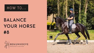 How to Practice Balancing Your Horse & Keep our Marriage alive | Begijnhoeve | How to #8