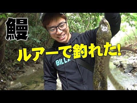 巨大ウナギがルアーで釣れた!【沖縄】【巨大魚】