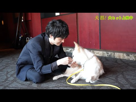 映画予告-林遣都、共演した保護犬・ミックとの再会を楽しむ 映画『犬部』メイキング映像