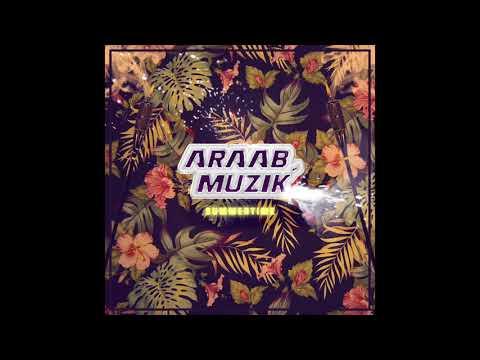 Araabmuzik - Summer Time mp3