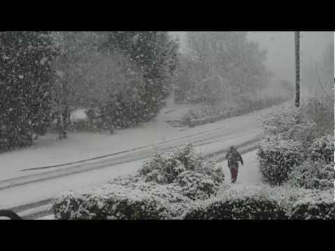 big freeze evesham timelapse snowfall
