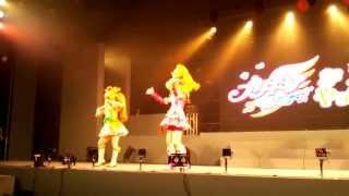 2013年5月3日ヒーローライブショー2013プリキュアステージ2/3