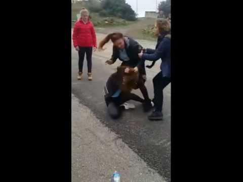 kızların kavgası ,:)