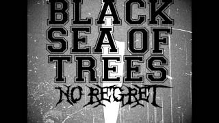 Black Sea Of Trees- No Regret