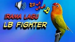 Download Lagu Masteran ampuh LB Fighter cocok untuk LB PAUD DAN BALIBU cepat gacor mp3